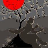 SONICALM - KRISHNA´S DUB, musical selection by Rebaluz. Tuesdays 15:00 at Ibiza Sonica Radio